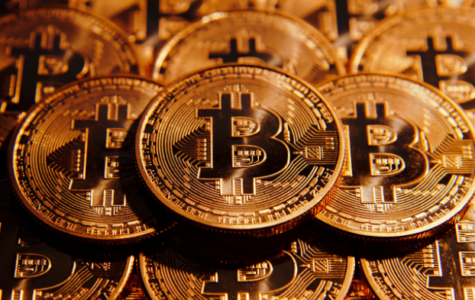Bitcoin Value Expected To Rise Again