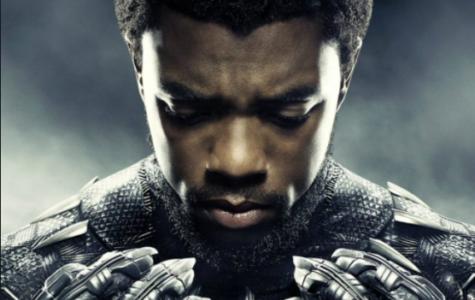 Black Panther Success