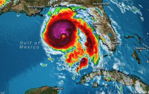 Hurricane Michael Hits Hard