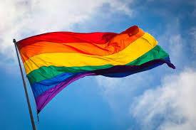 LGBTQ Students and School Struggles